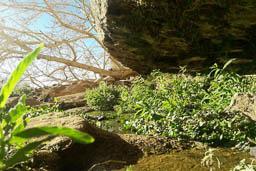 lawrence spring wadi rum jordan