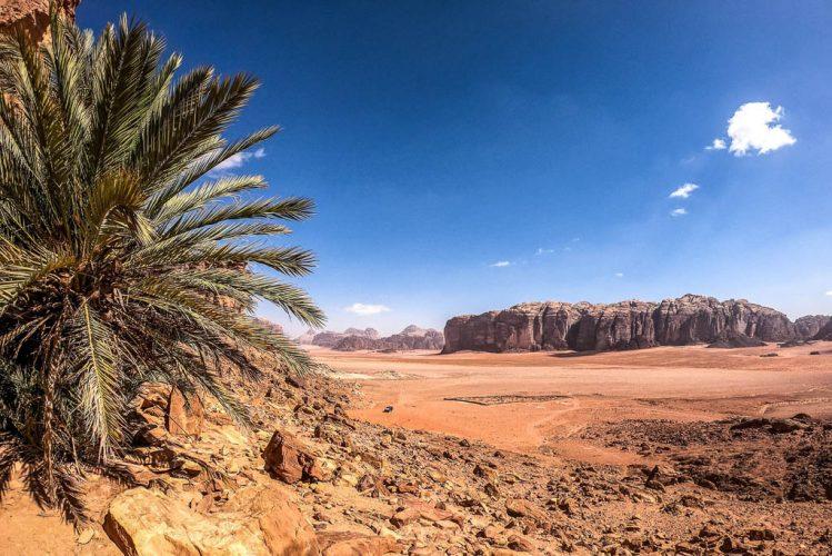 Jordan trail. al qattar spring in wadi rum